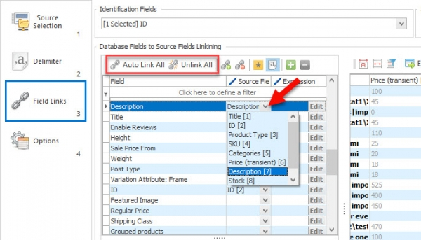 link-source-fields-to-database-fields